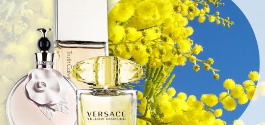 mimosa-perfumes