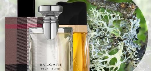 oakmoss-perfumes