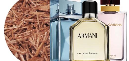 sandalwood-perfumes