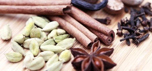 spices-cinnamon-vanilla-star-anise-cloves-cardamom
