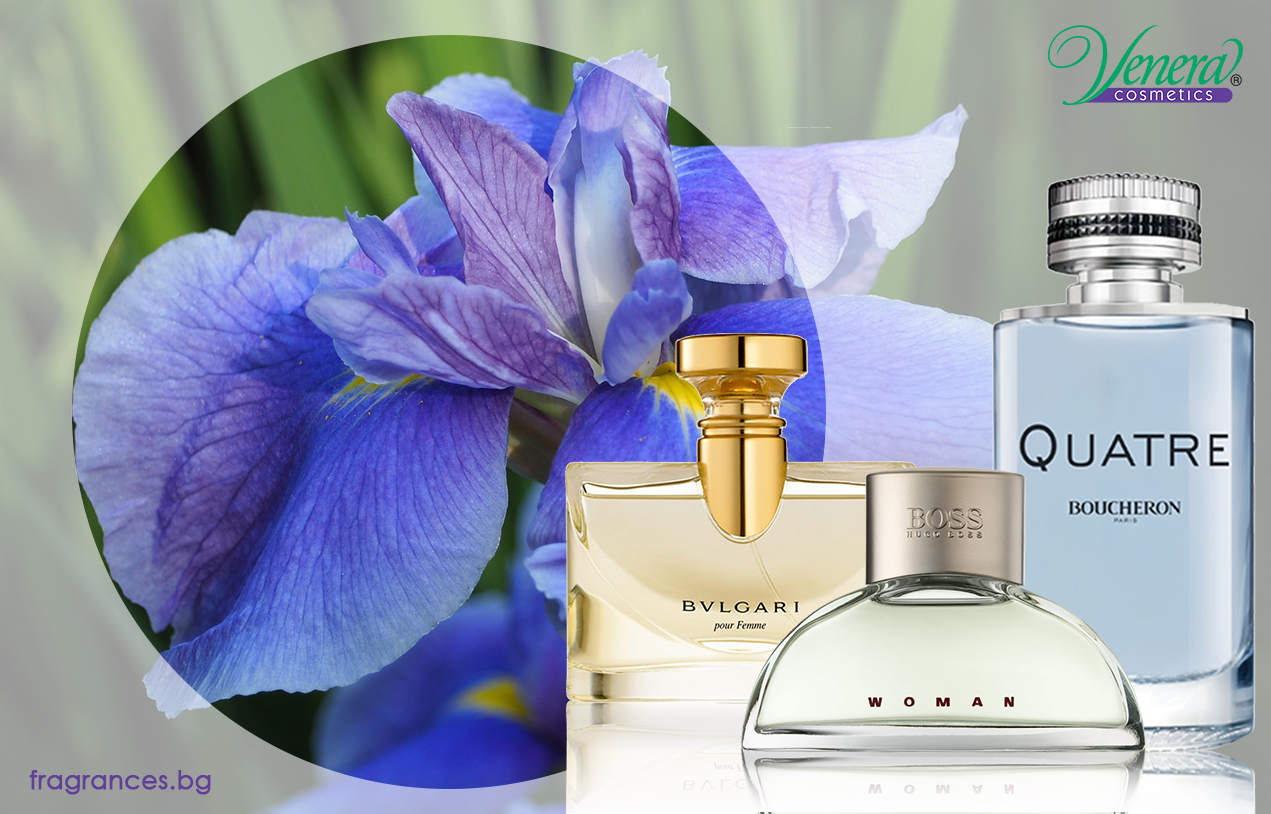Iris note perfumery blog venera cosmetics interesting facts izmirmasajfo