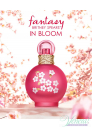 Britney Spears Fantasy in Bloom EDT 100ml за Жени