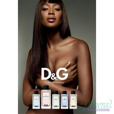 D&G Anthology L'Imperatrice 3 EDT 100ml for Women Without Package Women's Fragrance