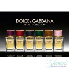 Dolce&Gabbana Velvet Vetiver EDP 50ml за Мъже БЕЗ ОПАКОВКА
