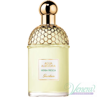 Guerlain Aqua Allegoria Herba Fresca EDT 125ml for Men and Women Without Package Unisex Fragrances without package