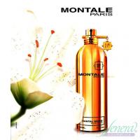Montale Santal Wood EDP 100ml for Men and Women Unisex Fragrance