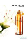 Montale Santal Wood EDP 100ml за Мъже и Жени БЕЗ ОПАКОВКА Унисекс парфюми без опаковка