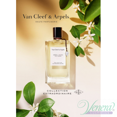 Van Cleef & Arpels Collection Extraordinair...