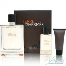 Hermes Terre D'Hermes Комплект (EDT 100ml + SGel 40ml + After Save Balm 15ml) за Мъже