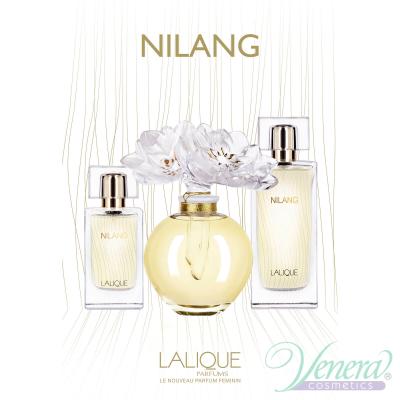 Lalique Nilang Комплект (EDP 100ml + Collier) з...