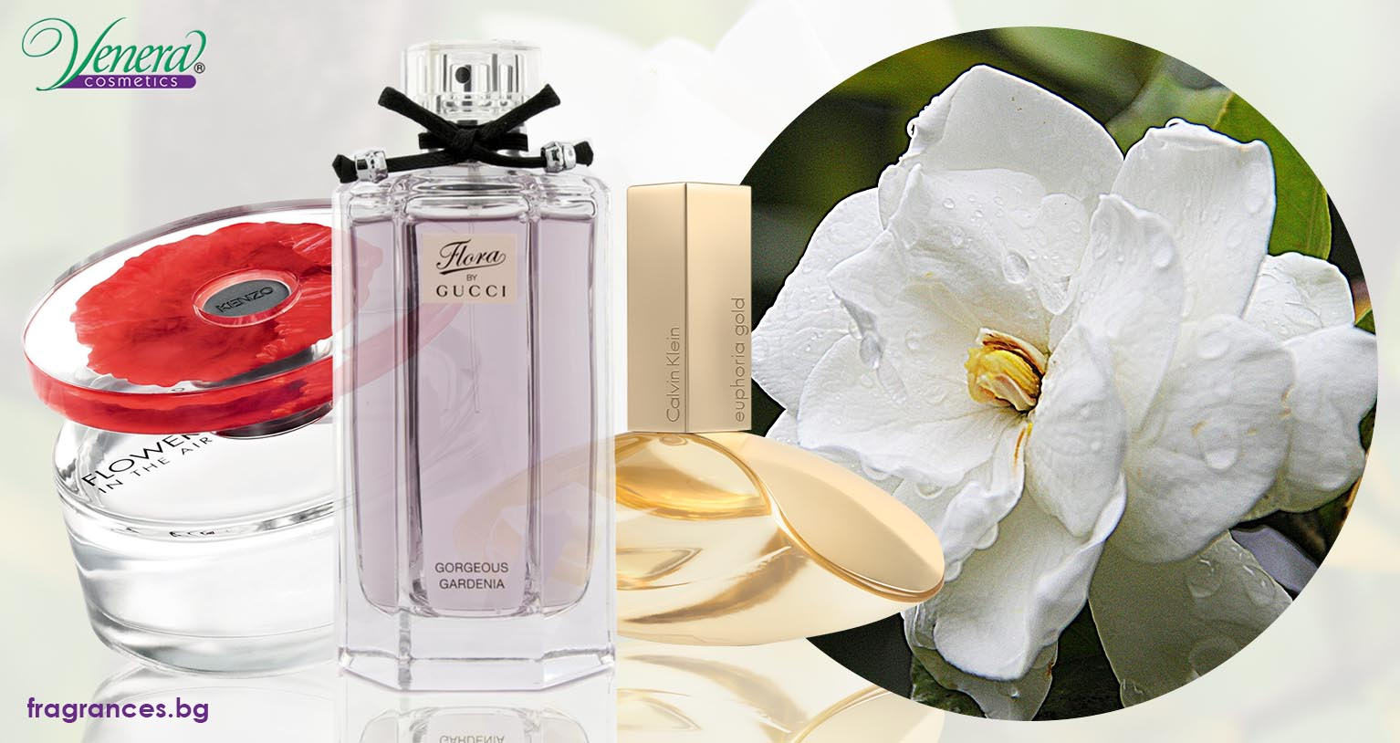 Gardenia The Delicate Scent That Brings Up The Romantic Side In