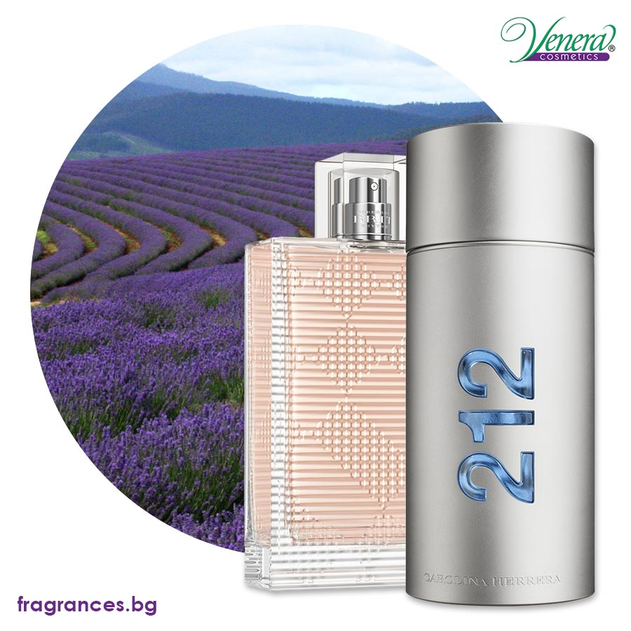 lavender field and perfumes